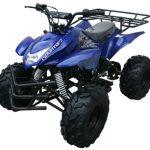 Blue 125cc ATV 4 Wheeler